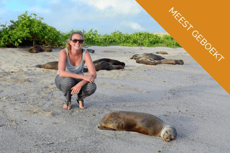 gezellig-met-zeeleeuwen-Galapagos.jpg